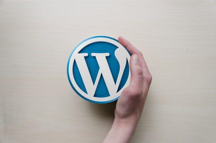 Temel Wordpress-Güvenliği-Önlemleri-Nelerdir?